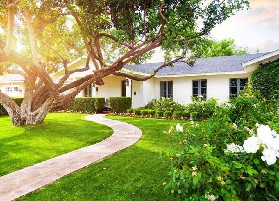 Landscaping in Sunnyvale